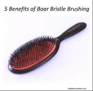 Boar Bristle Brush, Boar Bristle Brushing
