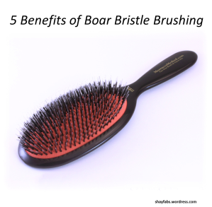 Boar Bristle Brush, Boar Bristle Brushing